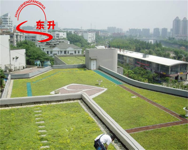 http://dongsheng.yjb5.cn/upfile/images/3a/20160722162322411.jpg
